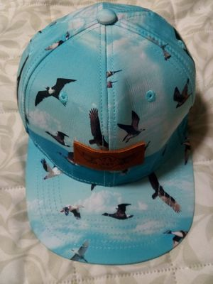 American Eagle and Outfitters cap beachy blue with bird prints $3 for Sale for sale  Jonesboro, GA