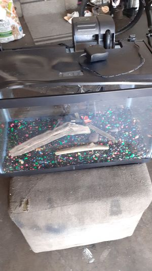 10 gallon fish tank for Sale in Keizer, OR