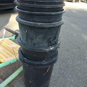 Black Pots for Sale in Santa Ana, CA