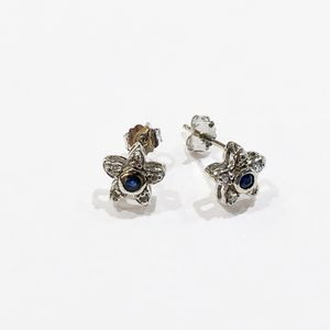 14K White Gold Woman's Star Earrings with approx. 0.10cttw Blue Stones and 0.10cttw Diamonds **Great Buy** 10012566-5 for Sale in Tampa, FL