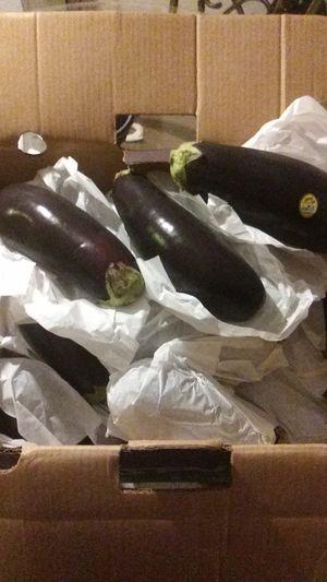 Fresh. Eggplant for Sale in Pasco, WA