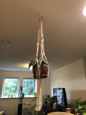 Macrame plant hanger - pot and plant not included for Sale in Seattle, WA