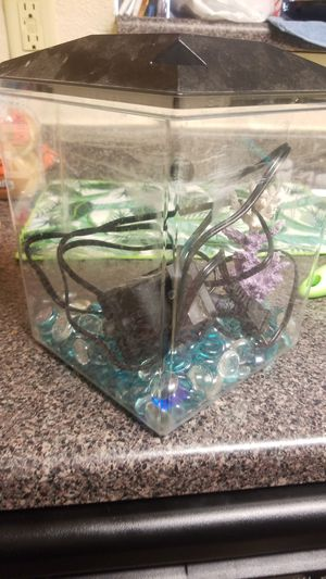 Fish tank w/filter & decor for Sale in Houston, TX