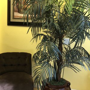 Beautiful Artificial Palm for Sale in Moreno Valley, CA