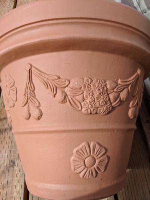 Italian Style Pot Plant for Sale in Edmonds, WA