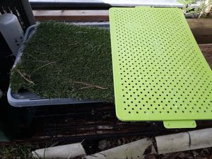 Dog crate and removable potty grass for Sale in Houston, TX