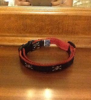 Cap'n Jack Sm-Med Dog Collar for Sale in Winter Park, FL