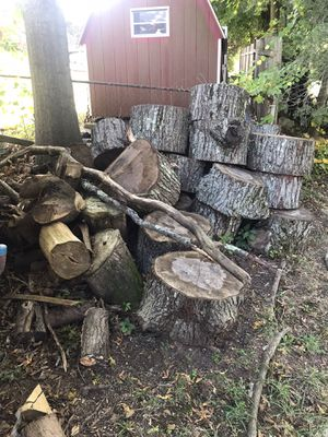 Free maple wood for Sale in Meriden, CT