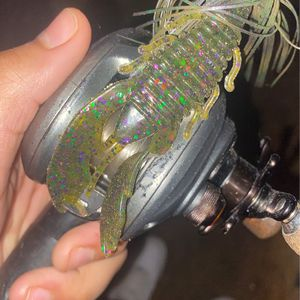Tournament Bait Caster for Sale in Shreveport, LA