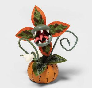 Creepy Decorative Small Halloween Faux Succulent (Orange) Hyde & EEK! Boutique Target for Sale in Los Angeles, CA