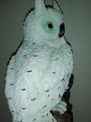 Tascano white owl for Sale in Auburn, WA