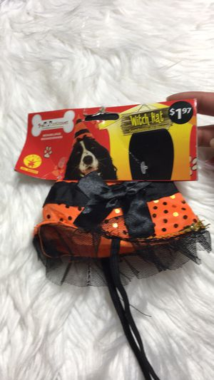 Halloween Dog Hat Animal | Cat Witch Hat NEW for Sale in Eagle Point, OR