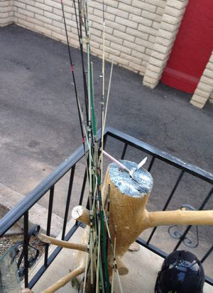 Assorted Fishing Poles for Sale in Mesa, AZ