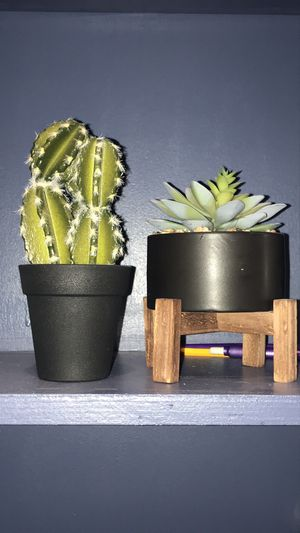 Small fake cactus and plant for Sale in Golden, CO