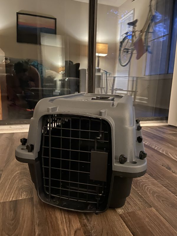 Pet Carrier for small dogs or cats