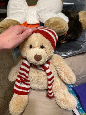 Bear for Sale in Chesapeake, VA