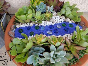 Purse & Succulent for Sale for Sale in Santa Maria, CA