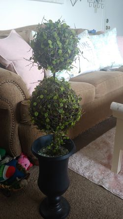 Beautiful pottery barn topiary! Great for holidays! for Sale in Dracut,  MA