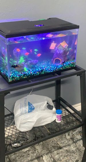 Selling tank ! 10 gallon for Sale in Fort Worth, TX