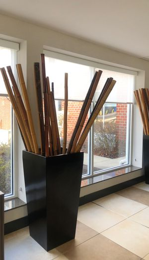 Decorative bamboo sticks with base. for Sale in West Laurel, MD
