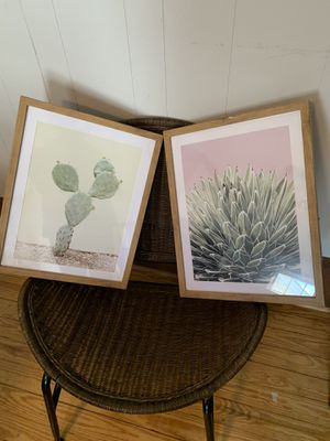 2 framed cactus prints for Sale in Columbia, SC