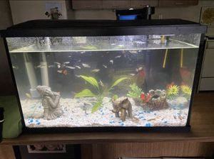 20 Gallon Tank For Sale No Cracks Only Used two months!!!!! $30.00 for Sale in Baltimore, MD