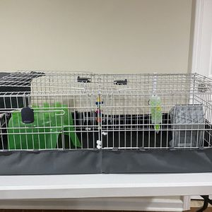 Guinea Pig Cage (Large) 47X24 for Sale in Detroit, MI