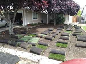 Sprinkler system and grass for Sale in Concord, CA