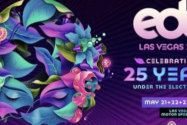 2 EDC Las Vegas 2021 - GA 3 Day Pass for Sale in Seattle,  WA