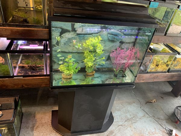 29 gallon fish tank aquarium filter stand light and lid