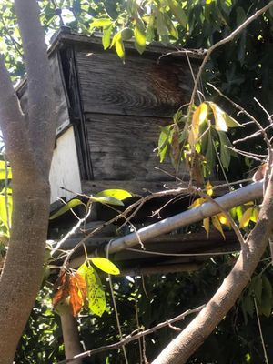 Honey keeper Beehives for Sale in West Covina, CA