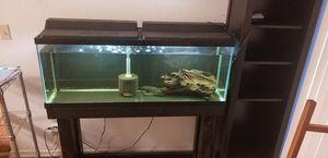 75 gallon fish tank for Sale in Santa Clarita, CA
