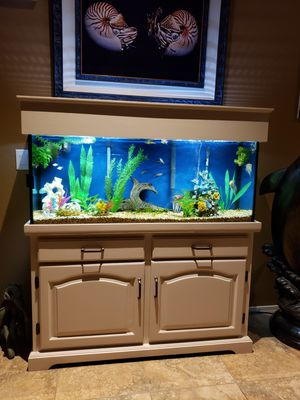 Fish tank and stand 55gal, $300 firm for Sale in Phoenix, AZ