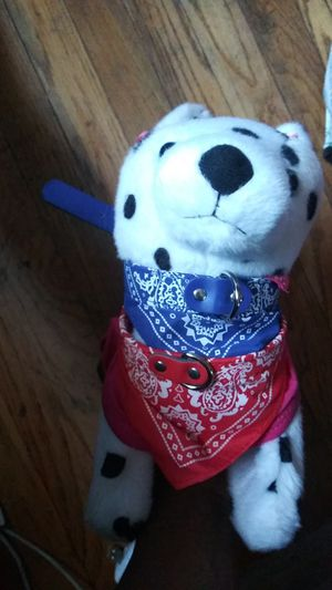 4th of July bandana dog collar/ individuals sold for Sale in Washington, DC