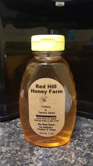 Raw local honey for Sale in Avon Park, FL
