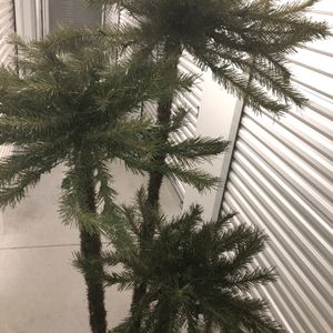 Interior Christmas Palm Trees. for Sale in Canton, MI