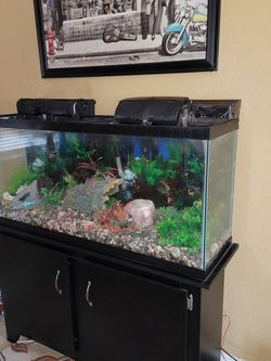 55 GALLON TANK WITH FILTERS AND STAND AND ACCESORIES IM AKSING 180 OBO for Sale in Fresno,  CA