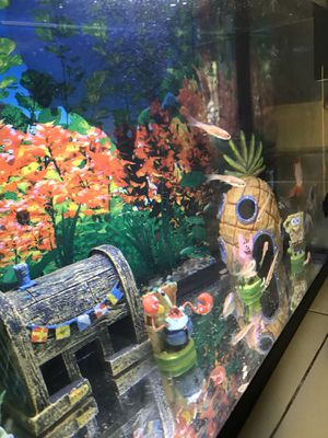 Small fish tank with 2 Gold Fish for Sale in Desert Hot Springs, CA