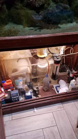 Salt water tank 150 gallons for Sale in Hollywood, FL