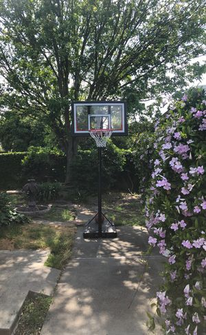 BASKETBALL HOOP 10' ADJUSTABLE for Sale in Danville, CA