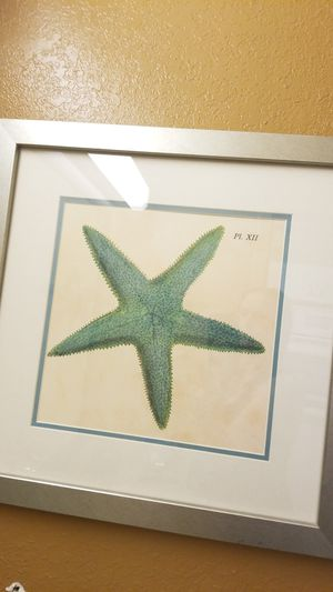 Starfish wall decor for Sale in Sterling Heights, MI