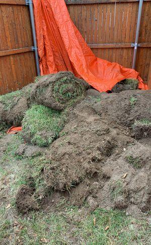 Free SOD grass dirt. for Sale in Warwick, RI