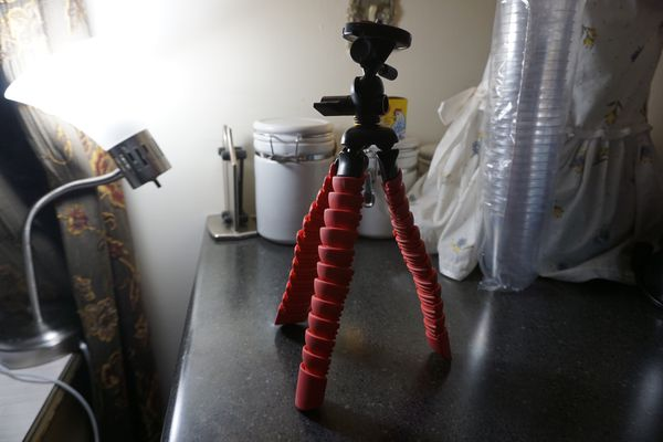 """12"""" Flexible Wrapable Legs Tripod W/ Quick Release Plate and Bubble Level (Red) for Nikon, Sony, Canon (etc.)"""