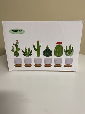 Zoutog Succulent Pots for Sale in Nashville, TN
