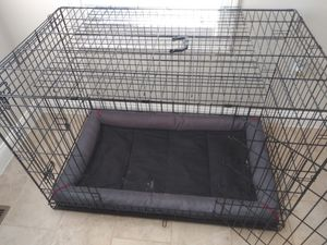 "38"" and 48"" dog crate. Excluding mat for Sale in Boston, MA"