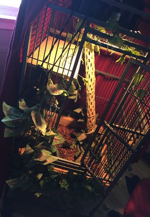 Bird/Reptile Cage (Ideal for birds or small lizards) for Sale in Carteret, NJ