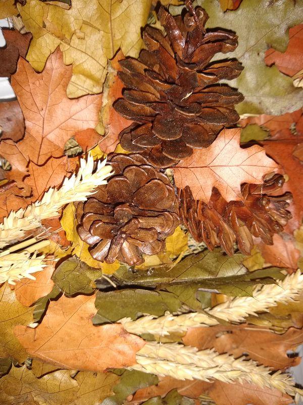 Preserved Autumn Wreath
