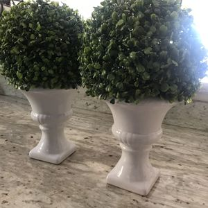 """(2)Topiaries 15"""" Tall for Sale in San Diego, CA"""