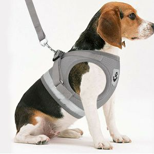"GustaveDesign Dog and Cat Adjustable Reflective Harness Leash Pet Vest with Traction Rope Soft Mesh Corduroy Dog Harnesses ""Gray, S"" for Sale in Houston, TX"