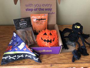 New Halloween Pup Box for Sale in Hemet, CA